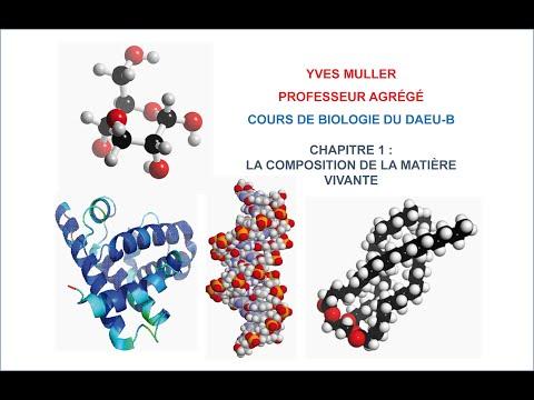 Chapitre 1 – Composition de la matière vivante - Cours de Biologie du DAEU-B