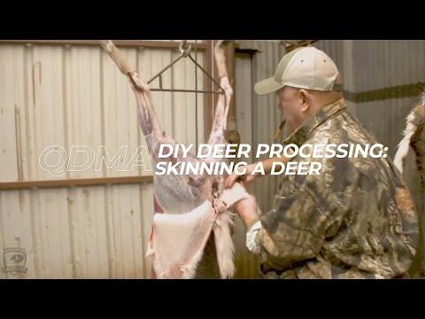 Ep. 13 - How To Skin A Deer | QDMA's Deer Hunting 101