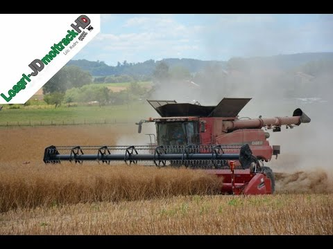 BIG Harvest 2016 | NEW Case IH 9240 Row Trac !! - YouTube