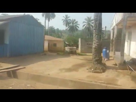 Cameroon - Driving in the Country of Cameroon
