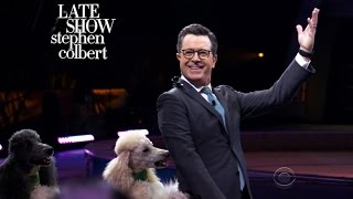 Stephen Colbert's Quest For The Greatest Show On Earth