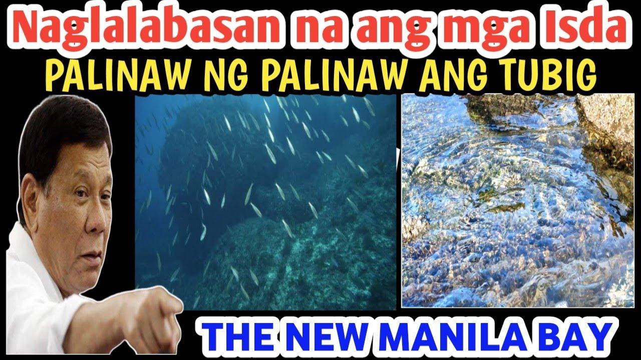 Download MGA ISDA SA MANILA BAY NAG LALABASAN!MALINAW NG TUBIG NASILAYAN NA MANILA BAY UPDATE 01 11 2020