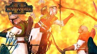 BESS IS BEST - Vampire Coast vs High Elves // Total War: Warhammer II Online Battle