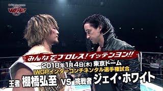 日本プロレス界最大のビッグマッチ! 新日本プロレス『ブシモ 5th ANNIV...