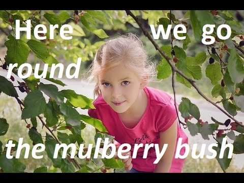 #53. Here we go round the mulberry bush - слушаем, читаем стишок и учим новые английские слова