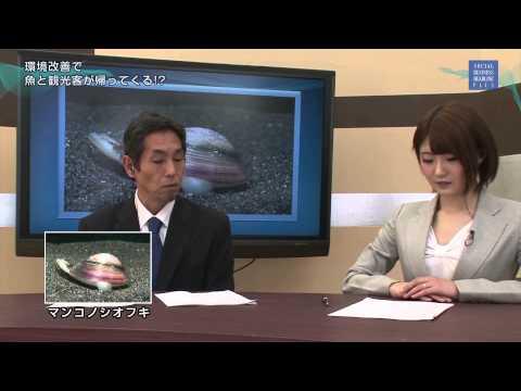 Japanese nympho news-放送事故!! ニュース番組の女性キャスターが赤面しながら○○○を連呼!?