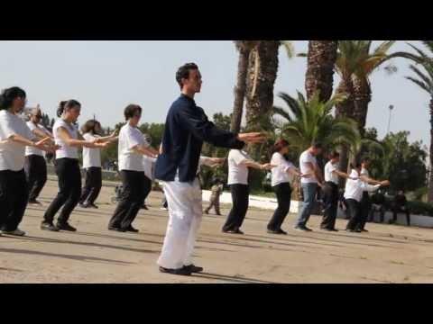 world taichi day 2013 Tunisia