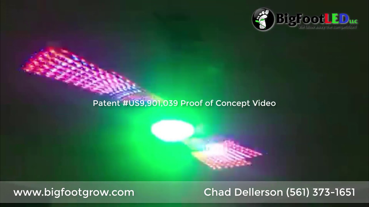 the future of lighting is here!