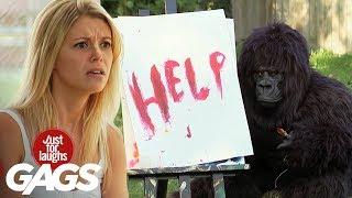 Gorila pintor