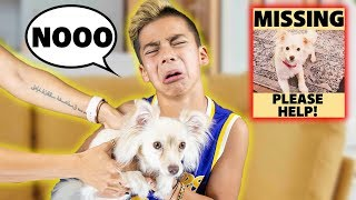 OUR SON REFUSES TO GIVE BACK The MISSING PUPPY... 😢 | The Royalty Family