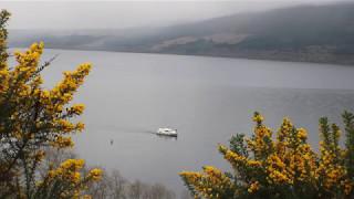 久々の目撃情報にざわざわ・・・スコットランドの湖でネッシーめいた何かが撮影される