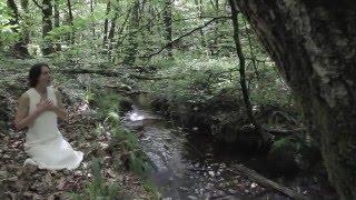 Chant pour les Esprits de la Nature en Brocéliande