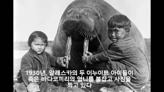 공개된적없는 전세계 희귀사진들(world Rare photos)