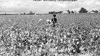 Mississippi Delta - Birthplace of the Blues