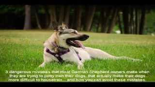 German Shepherd Names List