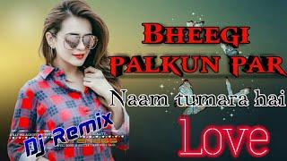 भीगी पलकों पर नाम तुम्हारा है। BHEEGI PALKON PAR NAAM TUMHARA HAI DJ REMIX SONG SAD LOVE SONG