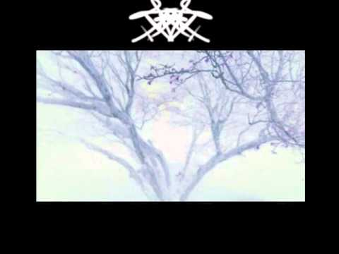 Super Satanic Satans - Dark Forest 1(The Upcoming of The Cold Era of Darkness and Sorrow)