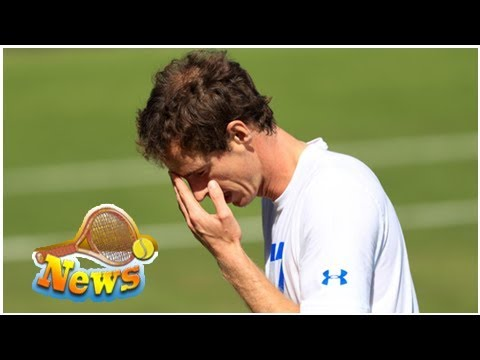 Andy murray's australian open in doubt as he considers hip surgery