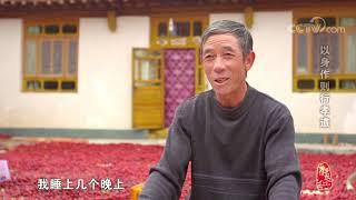 [中华优秀传统文化]以身作则行孝道| CCTV中文国际