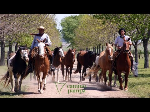 Tour To San Antonio De Areco Town & Estancia By Camino Pampa - Departing From Buenos Aires