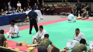 All American Open 2015 Kyokushnin Karate Tameshiwari 2