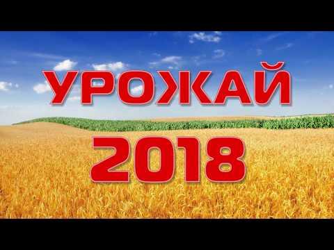 Урожай - 2018