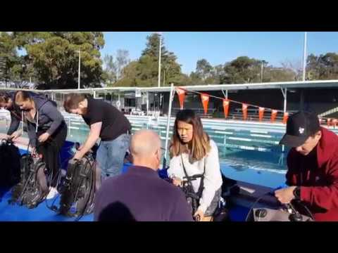 PADI Open Water Course in Sydney