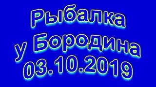 Рыбалка у Бородина 03 10 2019