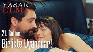 Alihan ile Zeynep birlikte uyandılar - Yasak Elma 21. Bölüm