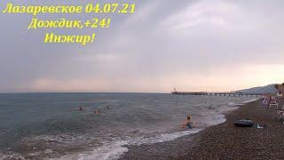 Утро в Лазаревском 04 07 2021 Дождик гром и 24 Инжир ЛАЗАРЕВСКОЕ СЕГОДНЯ СОЧИ