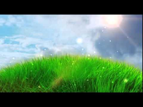 green grass field animated. Worship Grass Field Animation Free Footage Green Animated