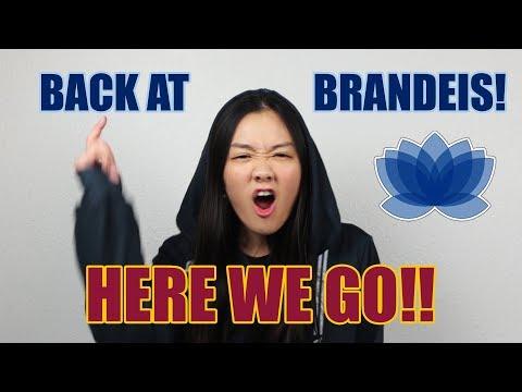 Brandeis VSA Event: Brandeis By Night Promo 03-14-19