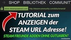 Steam Freunde Adden ohne Guthaben? Tutorial zum Anzeigen der Steam URL Adresse!
