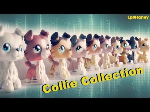 All My Lps Collies || LPS Collie Collection