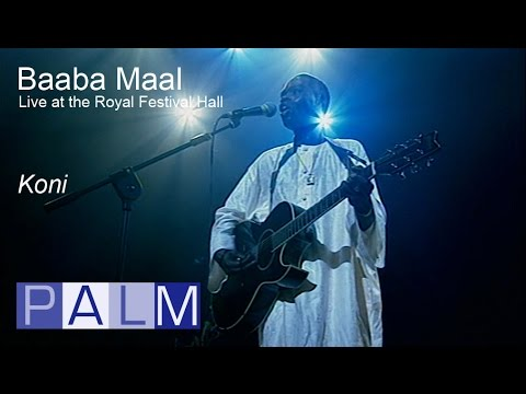 Baaba Maal: Koni   Live at the Royal Festival Hall