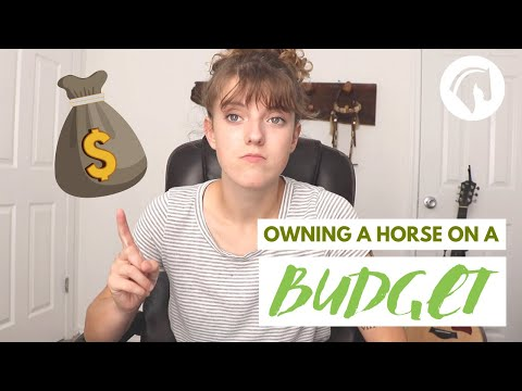 How To Own A Horse On A Budget (HORSE BUDGET HACKS)