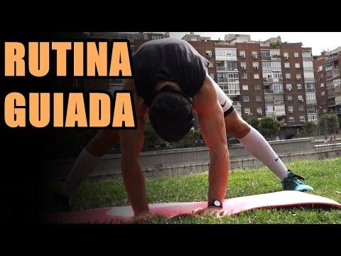 RUTINA COMPLETA DE MOVILIDAD GUIADA