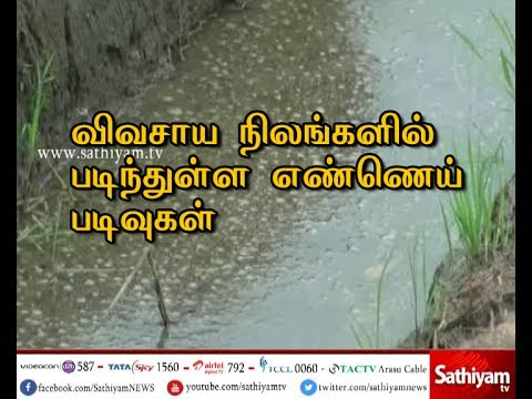 Farmers Urges to Remove Oil deposits from Kathiramangalam agricultural lands