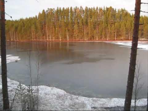 Suonenjoen Lintharju marraskuussa 2009