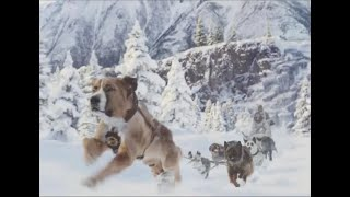 The Call of the Wild Avalanche Scene +  (2020) Harrison Ford