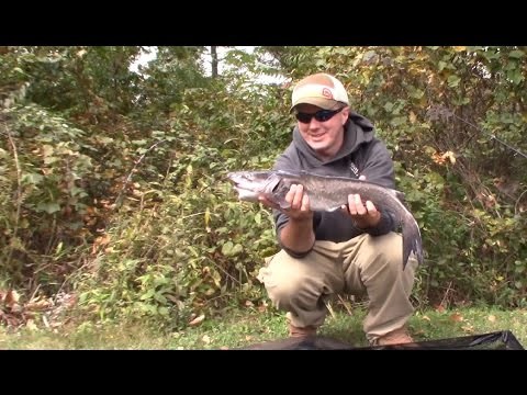 Fishing For Channel Catfish With Hot Dogs On The Bank