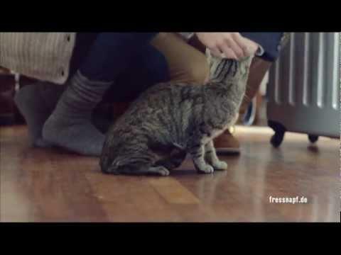 sweet kitten kleine s e k tzchen fressnapf de werbung 2012 youtube. Black Bedroom Furniture Sets. Home Design Ideas