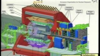 The primordial Universe: the Quark Gluon Plasma production at ALICE-LHC