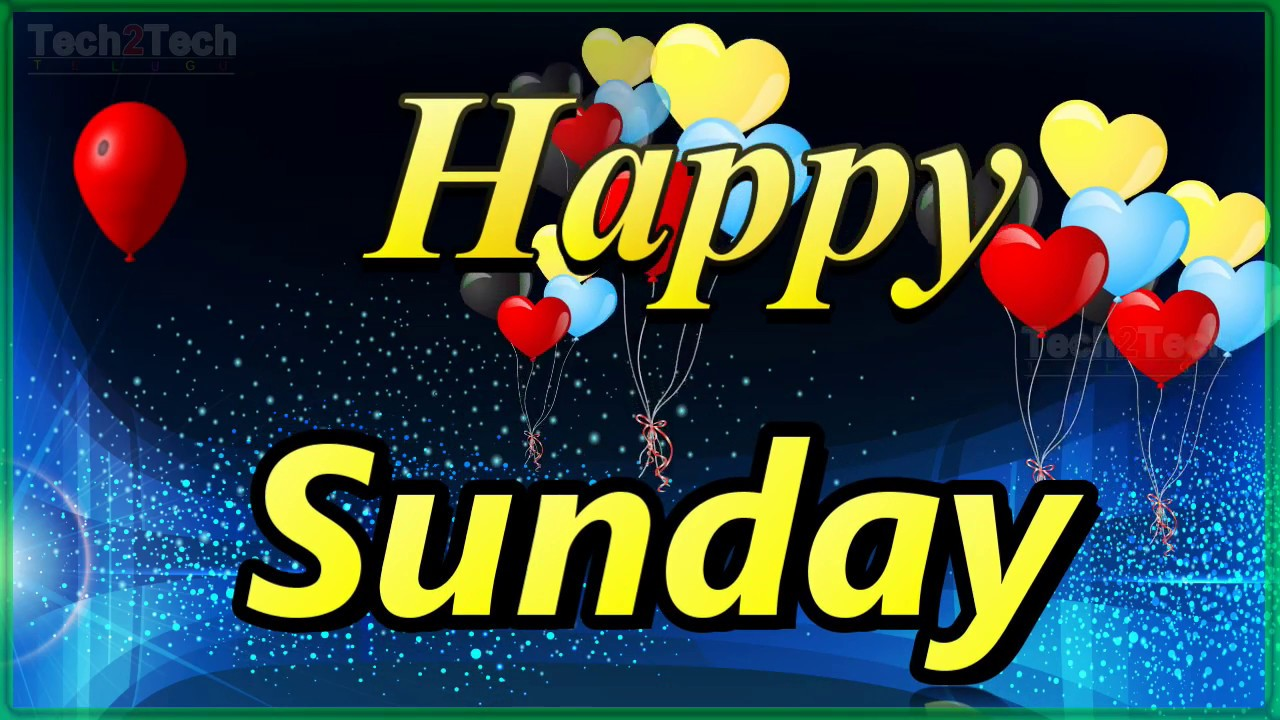 Happy Sunday Sunday Quotes Happy Sunday Flowers Good Morning