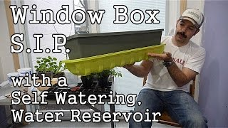 Homemade Self Watering, Sub-irrigated, Window Box Sip, With A Water Reservoir