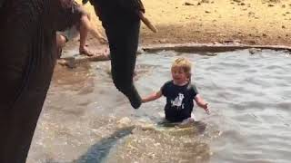 Bathing with an elephant