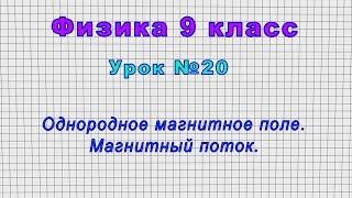 Физика 9 класс (Урок№20 - Однородное магнитное поле. Магнитный поток.)