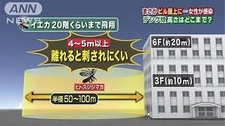 デング熱に感染した人は、高知県などで新たに増え、15日までに18都道府...