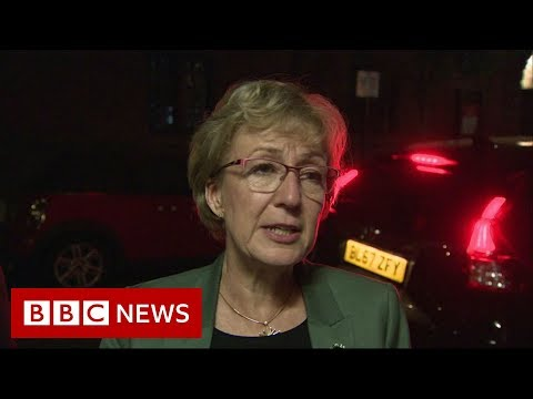Leadsom: 'I couldn't support the Brexit bill' - BBC News