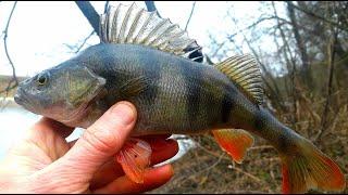 Рыбалка на верхней Москве реке
